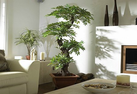 Valentine S Living Room